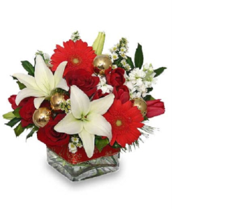 FESTIVE IN A CUBE BOUQUET in Vienna VA, Vienna Florist & Gifts