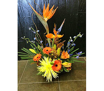 Custom Box Arrangement in Carlsbad CA, El Camino Florist & Gifts