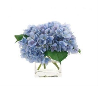 Blue Hydrangea Cubed in Chicago IL, Sauganash Flowers
