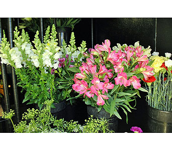 MN Grown Snapdragons & Alstromeria in Northfield MN, Forget-Me-Not Florist