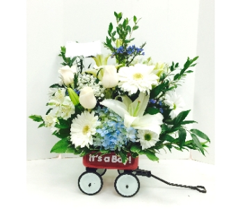BABY BOY WAGON in Arlington VA, Twin Towers Florist
