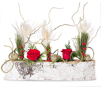 Birch Bark Holiday Centerpiece in Oshkosh WI, House of Flowers