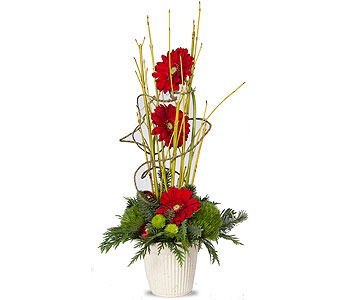 Artful Holiday Gerbera Bouquet in Oshkosh WI, House of Flowers