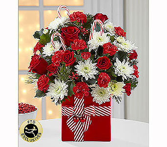FTD HOLIDAY CHEERThe FTD� Holiday Cheer� Bouquet i in Chesapeake VA, Greenbrier Florist