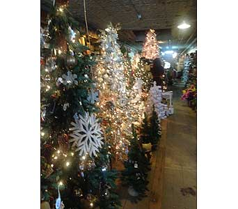 Tour Our Store in Loudonville OH, Four Seasons Flowers & Gifts