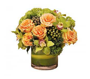 Lakewood Ranch $89.99-$199.99 in Bradenton FL, Ms. Scarlett's Flowers & Gifts