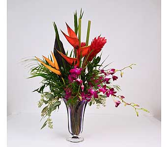 Tropical Crush in Indianapolis IN, Gillespie Florists