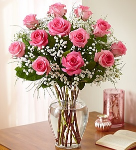Premium One Dozen Long Stem Pink Roses in Camp Hill and Harrisburg PA, Pealers Flowers