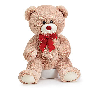 Beige Teddy Bear in Princeton, Plainsboro, & Trenton NJ, Monday Morning Flower and Balloon Co.