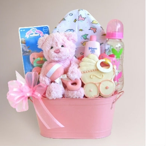 Baby Girl Gift Basket in Needham MA, Needham Florist