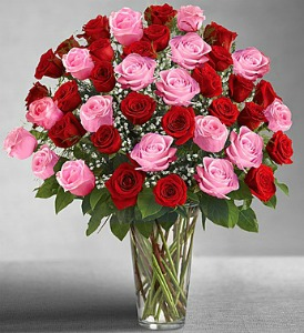 Ultimate Elegance Pink & Red in Lemont IL, Royal Petals