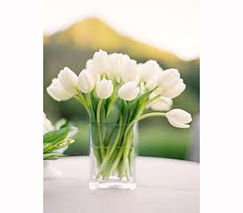 White Tulips in Bellevue WA, CITY FLOWERS, INC.