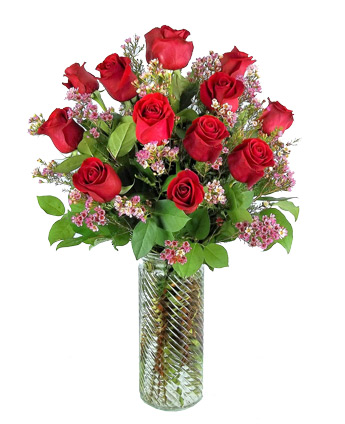 One Dozen Premium Roses in Newport News VA, Pollards Florist