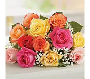 12 Mixed Roses in Madison ME, Country Greenery Florist & Formal Wear