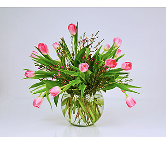 Sweetest Blush Tulips in Indianapolis IN, Gillespie Florists