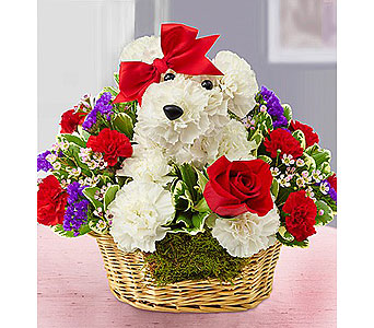 Gone to the Dogs in Fredericksburg VA, Finishing Touch Florist
