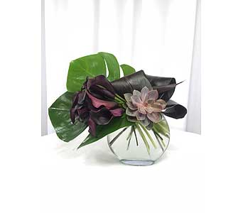 Modern Callas in Santa Clarita CA, Celebrate Flowers and Invitations