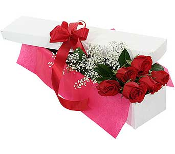 6 beautiful red roses boxed in Ajax ON, Adrienne's Flowers And Gifts