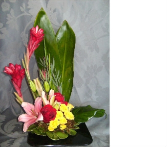 Tropical Elegance in Evanston IL, West End Florist & Garden Center Inc.