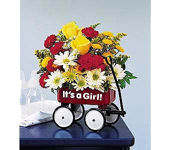 Baby's First Wagon for Girl in New York NY, CitiFloral Inc.