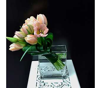 Elegant Tulips in Thornhill ON, Orchid Florist