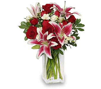 V Day in Mooresville NC, All Occasions Florist & Boutique<br>704.799.0474