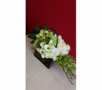 White Beauty in Las Vegas-Summerlin NV, Desert Rose Florist