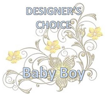 Designer's Choice Baby Boy in Sugar Land TX, Nora Anne's Flower Shoppe