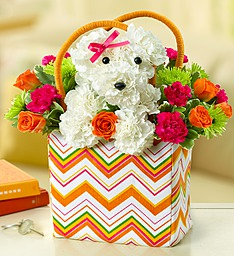 Doggie Bag in Revere MA, Flower Gallery