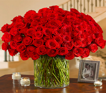 100 Premium Roses Vased in Indianapolis IN, George Thomas Florist