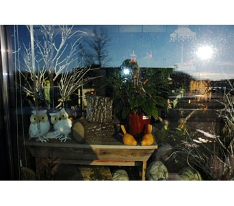 WINDOW in Northfield MN, Forget-Me-Not Florist