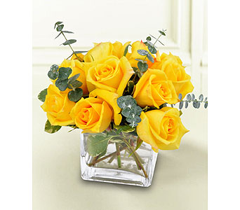 Modern Enchanted Yellow Roses in Williamsburg VA, Morrison's Flowers & Gifts