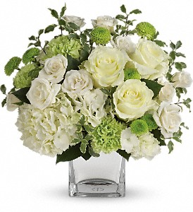Teleflora's Shining On Bouquet in Houston TX, Village Greenery & Flowers