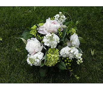 Vermont Flowers 1