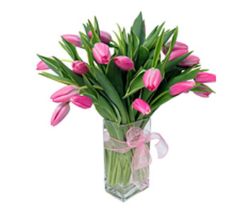 Perfectly Pink Tulips in Detroit and St. Clair Shores MI, Conner Park Florist