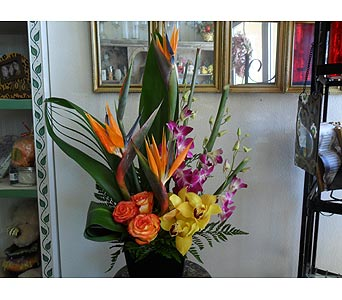 Mango Krush in Henderson NV, Beautiful Bouquet Florist