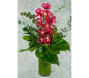 Single Cymbidium Orchid Stem Arrangement in Great Neck NY, United Floral