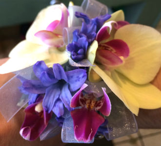 White and Purple Orchid in Farmington CT, Haworth's Flowers & Gifts, LLC.