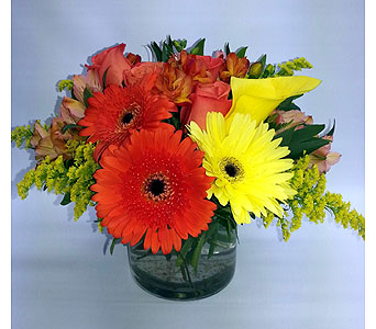 FFB-01 in Quincy MA, Fabiano Florist
