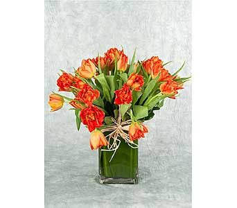 Orange Tulips in a Vase in Great Neck NY, United Floral