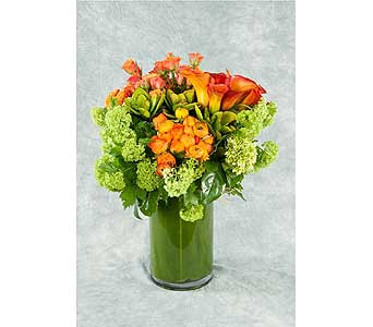 Clustered Arrangement in Great Neck NY, United Floral