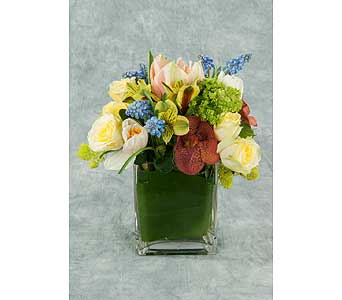 Low and Lush Arrangement in Great Neck NY, United Floral