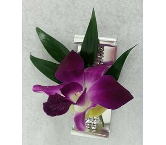 Jazzed Up Purple Dendrobium Boutonniere in Branford CT, Myers Flower Shop