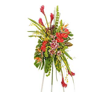 Tropical Fusion Easel Display in Dallas TX, In Bloom Flowers, Gifts and More
