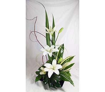 Lovely Lilies in Naples FL, Naples Flowers, Inc.