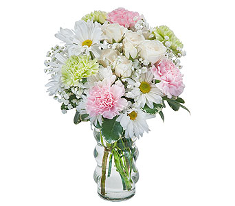 Soft and Sweet in Schaumburg IL, Deptula Florist & Gifts, Inc.