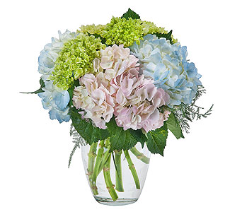 Southern Charm in send WA, Flowers To Go, Inc.