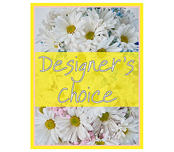 Designer's Choice - New Baby in Bloomington IL, Forget Me Not Flowers