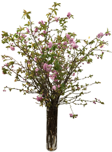 Cherry Blossom-Large in New York NY, Starbright Floral Design