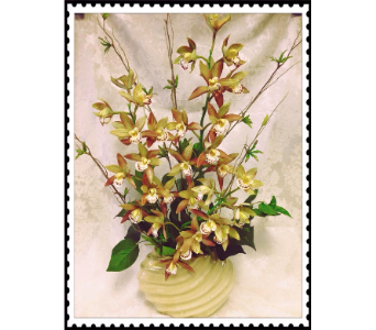Cymbidium Green Orchids in Anchorage AK, Alaska Flower Shop